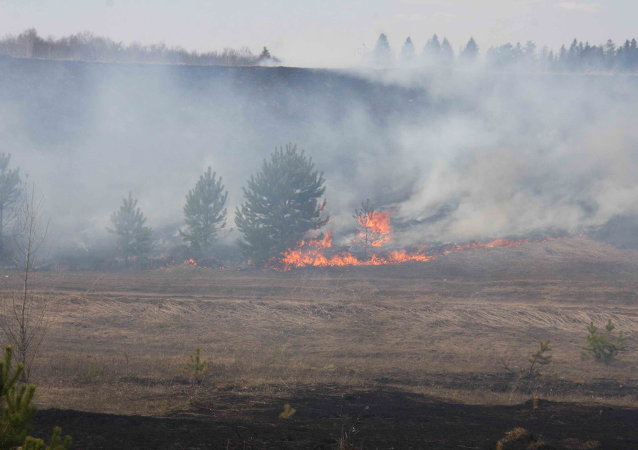 Wildfires in Russia's Far East