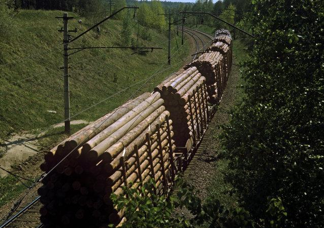 中国拟投资萨哈林岛木材加工工业