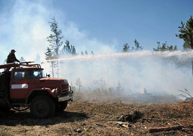森林火灾 (俄罗斯外贝加尔边疆区)