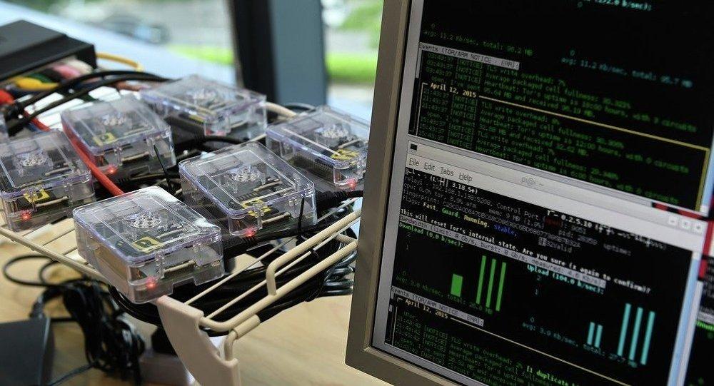 德宪保局:德经济每年因网络间谍活动损失2.5亿欧元