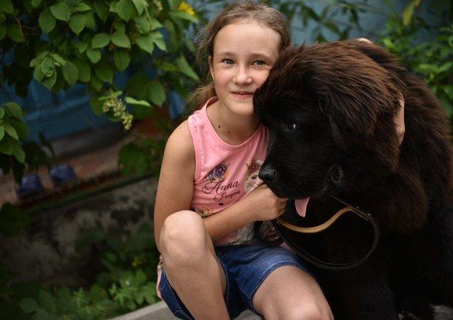 俄犬業聯盟:居家隔離是一個養狗的好時機