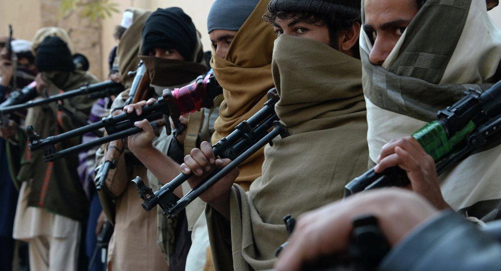 上合组织:阿富汗北部的恐怖组织正在就合并问题进行讨论