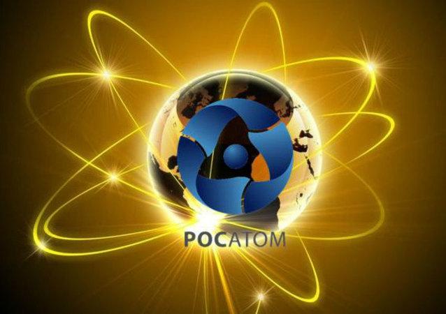 俄越签署宁顺核电站一期建设协议