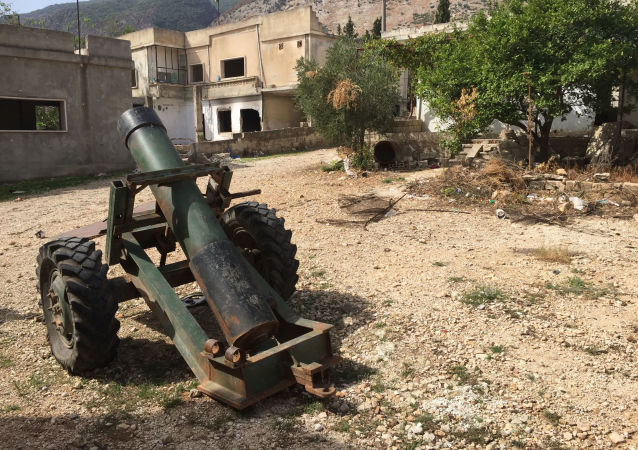 恐怖分子导致叙利亚哈马省发电站失控