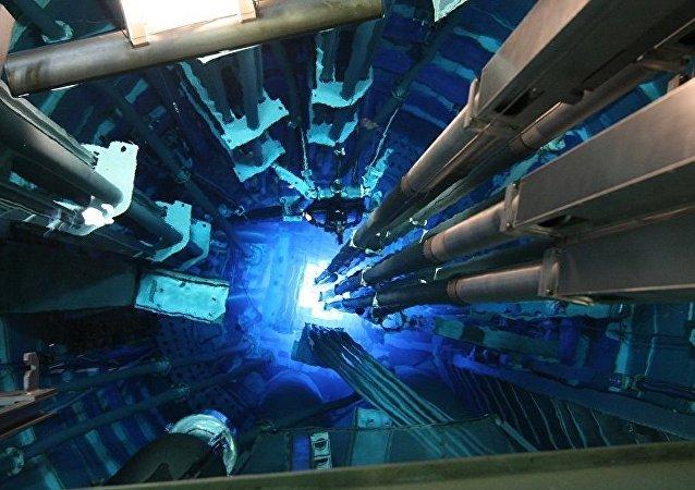 中核代表在俄了解CFR-600反应堆设备制造进展