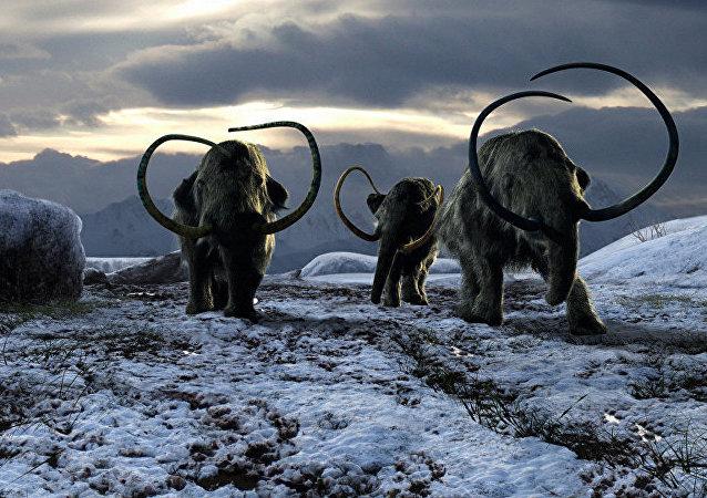 墨西哥考古学家发现猎捕猛犸象的陷阱