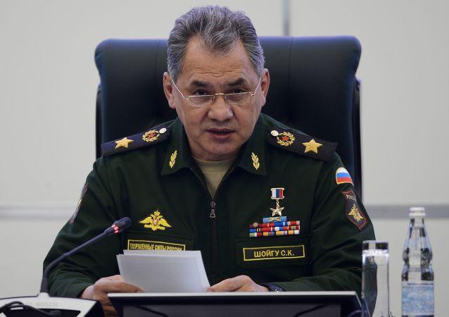 俄防长:四个俄军警营在叙冲突降级区执行任务