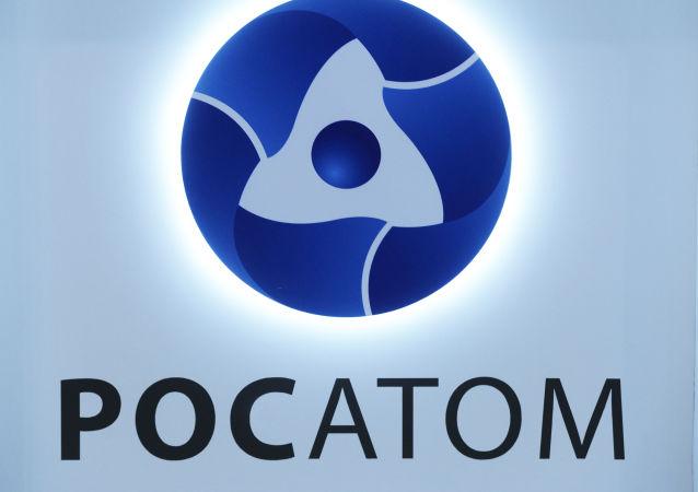 俄原子能公司可能很快签署库丹库拉姆核电站第5号、6号机组建设协议