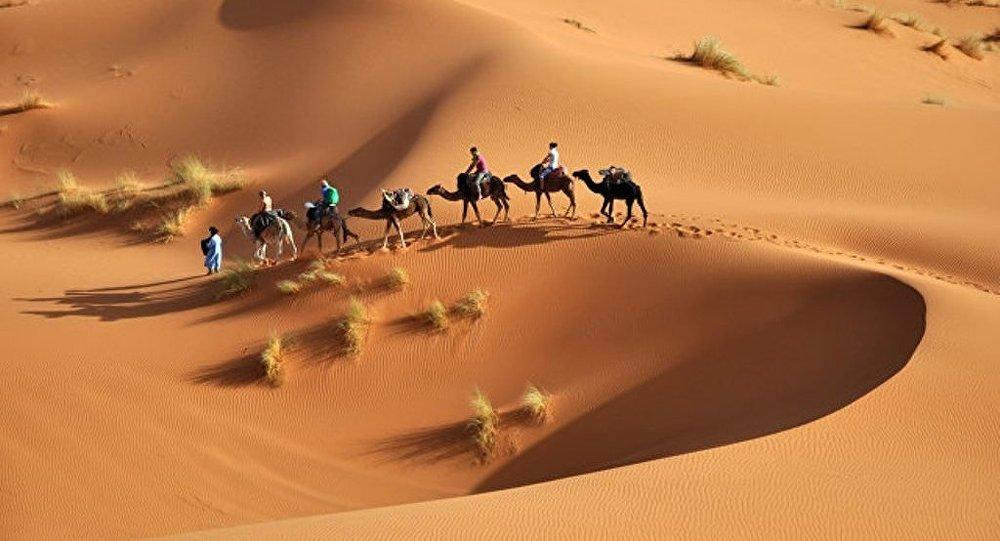 学者预测撒哈拉沙漠百年后的风貌
