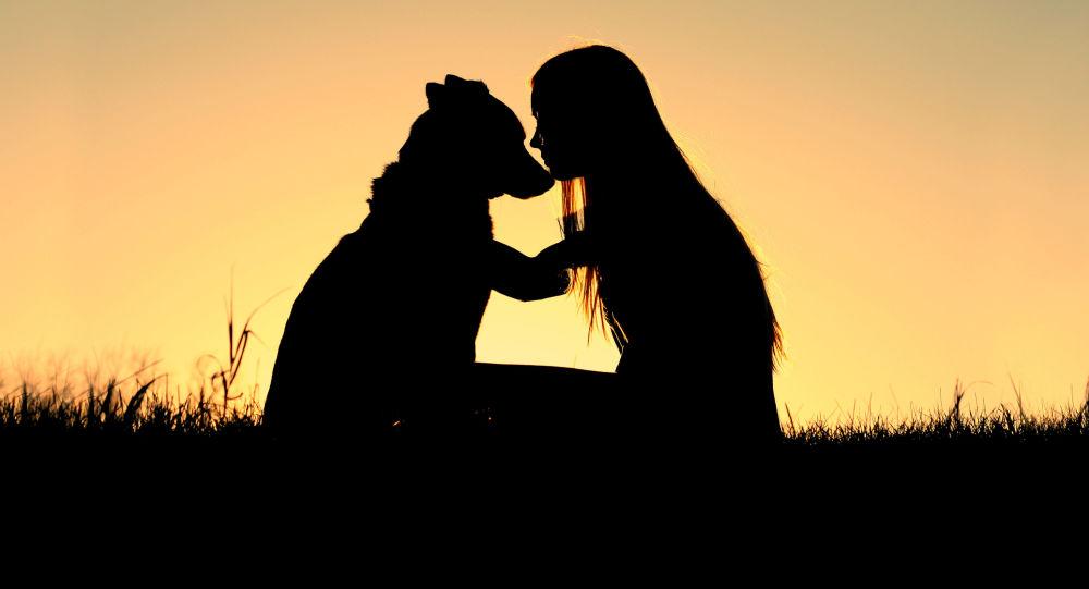 研究:对狗的爱源于基因