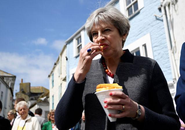 民調:多數英國保守派支持首相特雷莎·梅辭職