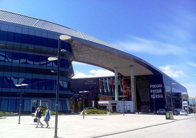2017年国际博览会