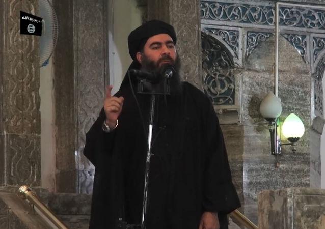 俄外交部:巴格達迪已被消滅的可能性非常大