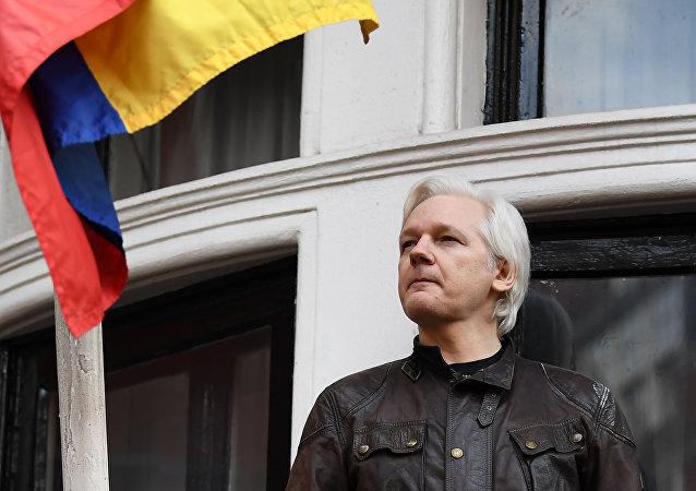 媒体:厄瓜多尔已为保护阿桑奇花费数百万美元