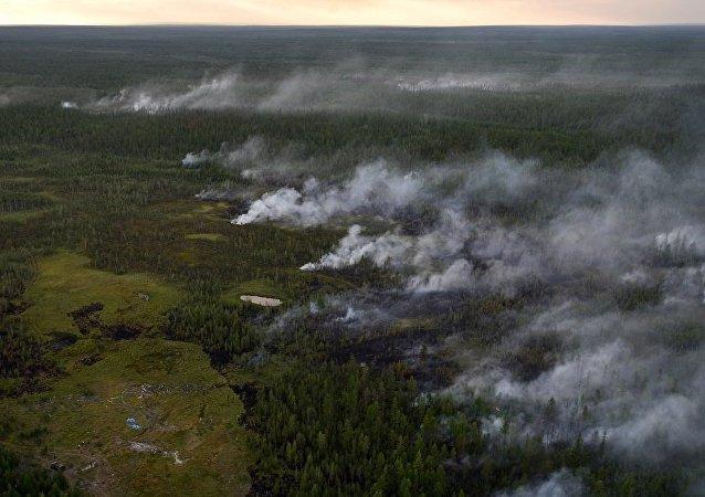 俄薩哈共和國政府將為森林火災使用人工降雨