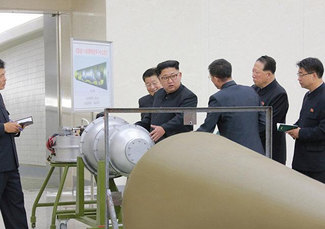 国际原子能机构总干事:朝鲜核计划引发严重不安