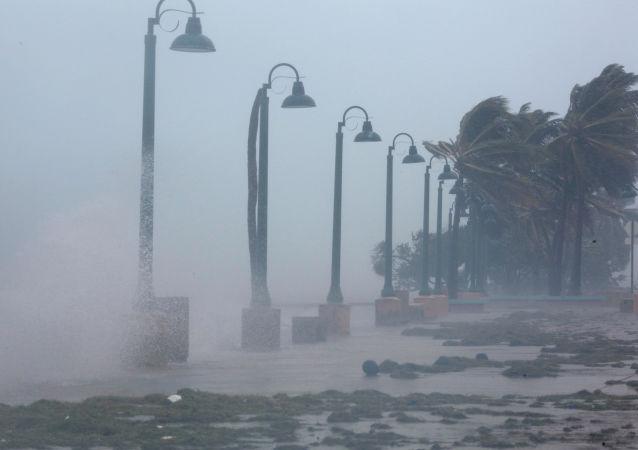 波多黎各颶風