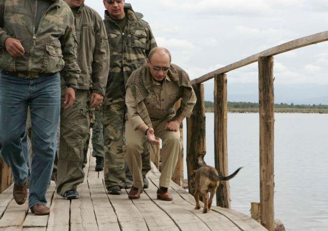 俄總統新聞秘書:普京有寵物