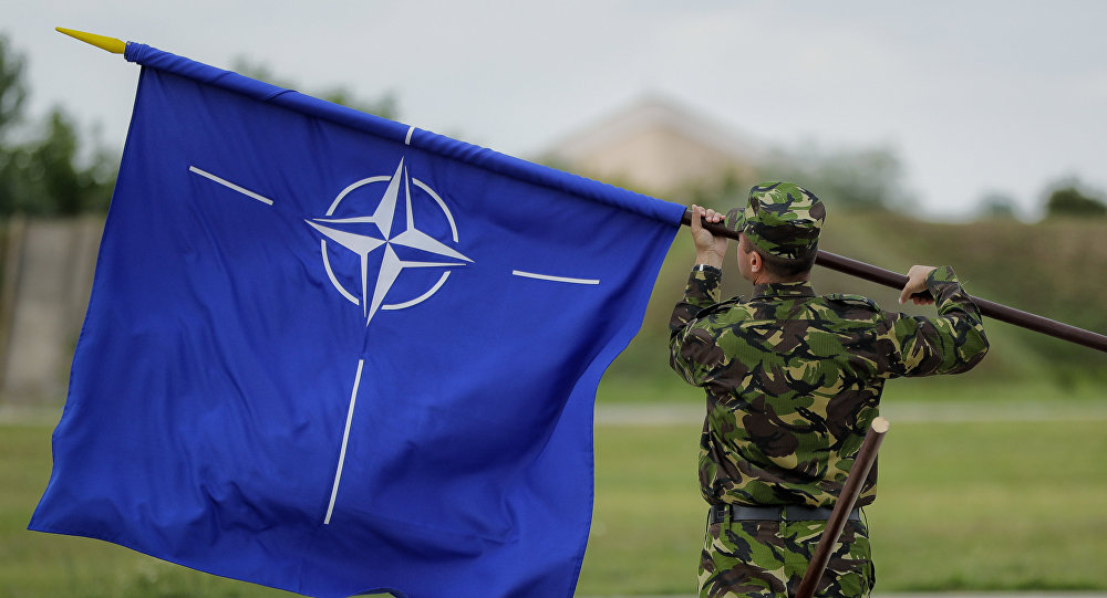 """北约将在格鲁吉亚举行""""敏捷精神""""多国军事演习"""