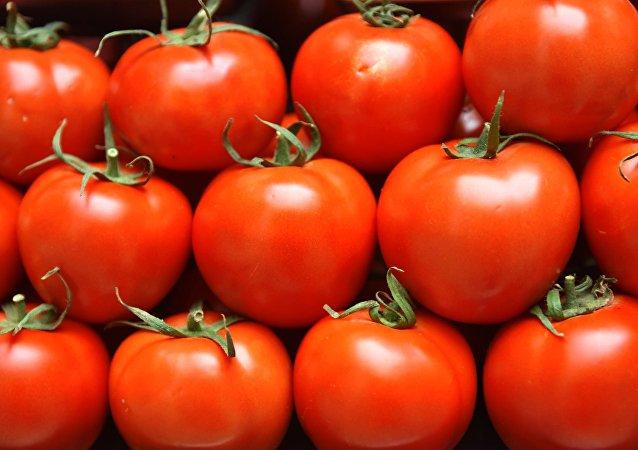 Нормализация российско-турецких отношений. Отмена запрета на импорт турецких томатов