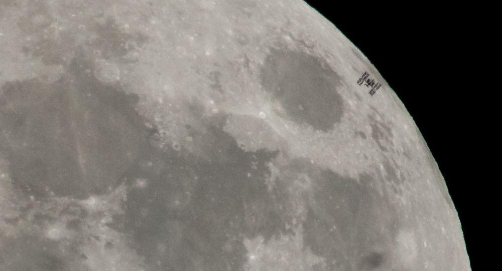 俄國家航天集團打算將動物送向月球並為此建造單獨飛船