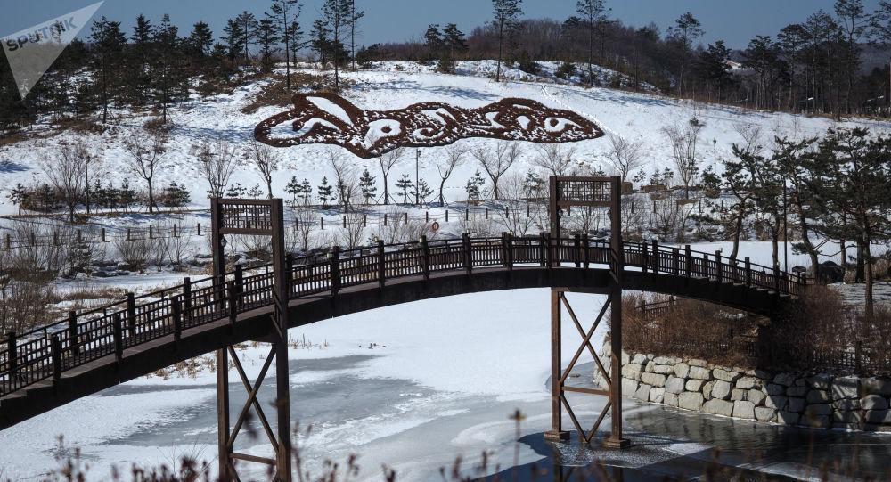 250余名外国选手将在韩国平昌备战北京冬奥会