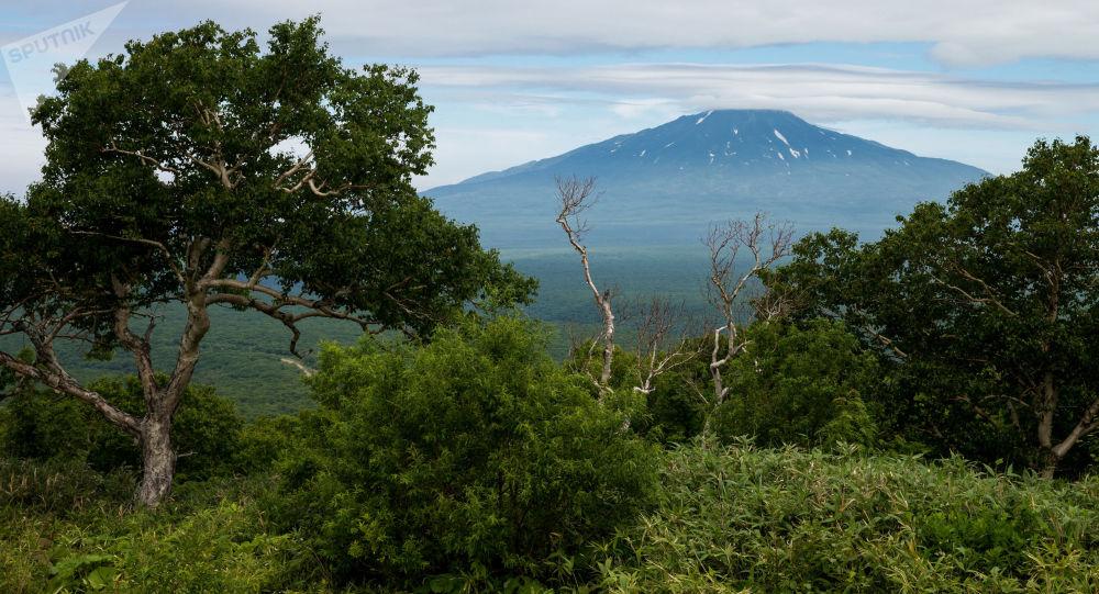 俄千岛群岛埃别科火山喷发出高达3000米的灰柱