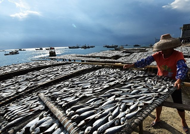 中國2020年成為全球魚類和海產品成品主要出口國