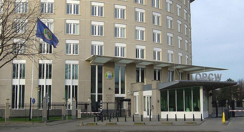 俄外长:西方对禁化武组织秘书处采取私有化方针