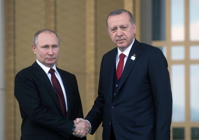 克宫:普京与埃尔多安就中东地区局势升级通电话讨论