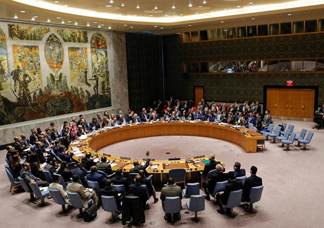 法国外交官:法国永远不会将自己的安理会席位让给欧盟