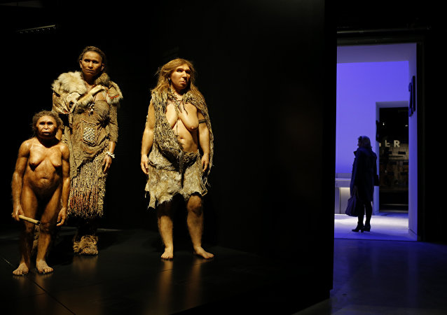 只有 3% 的史前人類與他們的表親交配——今天是 10%!