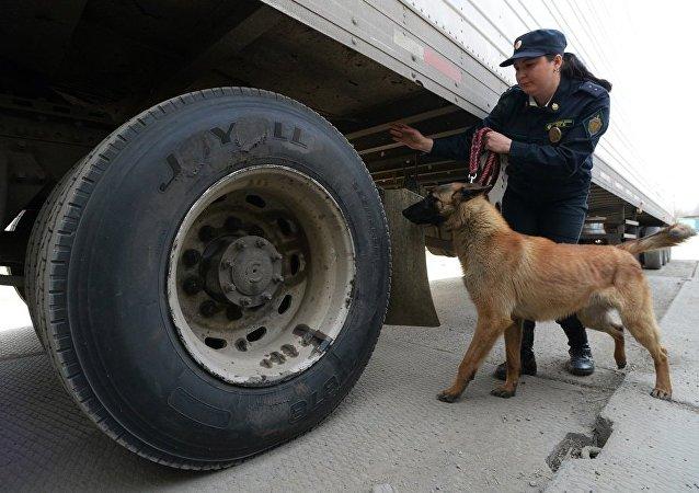 俄布拉戈维申斯克海关在从黑河入境的中国货车上发现27.5公斤水银
