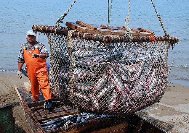 挪威1月1日后可能对欧盟和英国渔民关闭水域