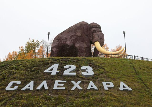 俄罗斯萨列哈尔德市入口处猛犸象雕像