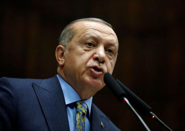 土耳其总统称其很有可能于下周会见普京