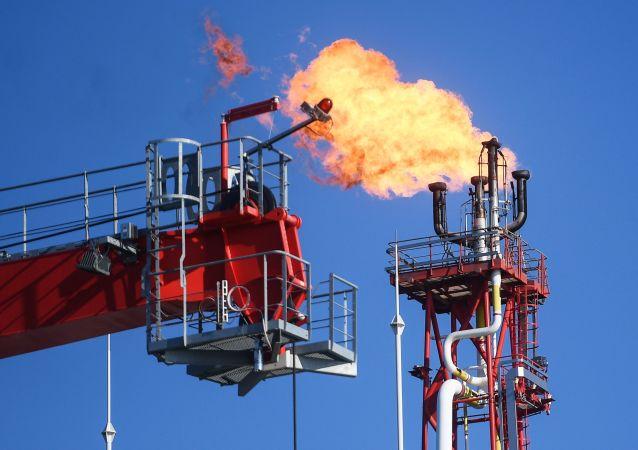 法國油價上漲引發抗議活動造成近50人受傷