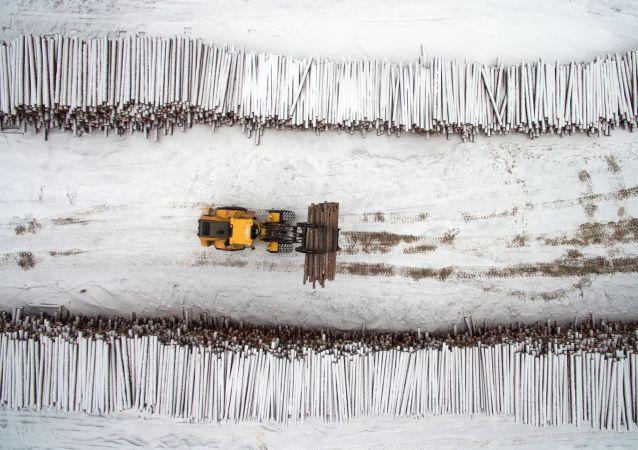 俄罗斯自7月1日起对多种粗加工木材出口征收10%的关税