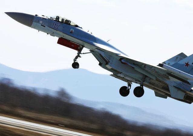 消息人士:埃尔多安将就采购俄制苏35战机建议进行评估
