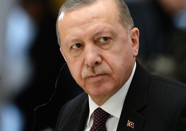 克宫:普京将在土耳其总统埃尔多安访俄期间与其讨论双边关系等问题