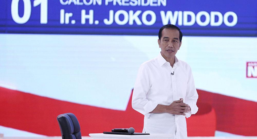 """印尼请求设立""""一带一路""""专项基金是减少投资合作被政治化的尝试"""