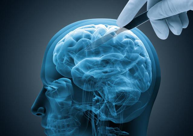 科學家們查明如何預防老年痴呆