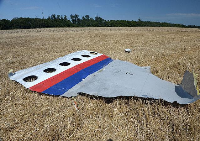 马来西亚总理不排除将与普京在符拉迪沃斯托克讨论马航MH17空难问题