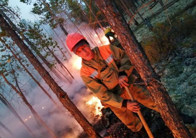 俄紧急情况部不排除接受美国协助扑灭西伯利亚大火的提议