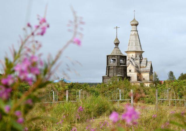 俄自然资源部将野生动物评估价值提高400倍
