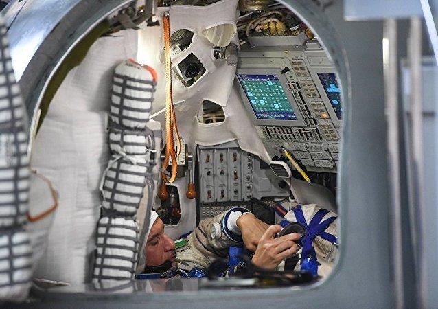 意大利宇航员卢卡·帕尔米塔诺