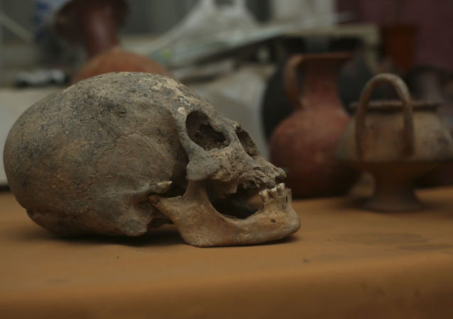 5000年前的人类颅骨中发现最早的鼠疫杆菌菌株