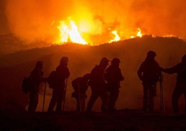 土部长:土耳其安塔利亚省林火已得到控制