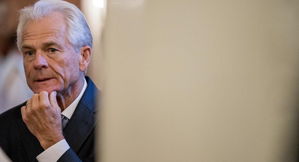 美国白宫顾问彼得·纳瓦罗
