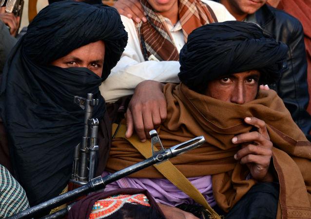 俄专家解读为何缴获的大量武器无助于塔利班与邻国开战